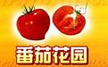番茄花园主题